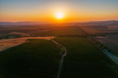 A Beautiful Sunset over vineyard field in Europe Royalty Free Stock Image