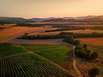 Beautiful Sunset over vineyard fields in Europe Stock Photo