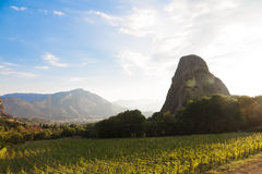 A Beautiful Sunset over vineyard in Meteora, Greece Stock Photography