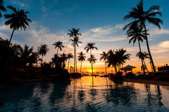 Beautiful sunset with palm trees reflected in pool. Travel. Royalty Free Stock Photography