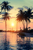 Beautiful sunset with palm trees silhouettes on a tropical beach. Asia. Stock Images