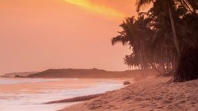 Beautiful sunset on a paradise beach. West Africa stock video