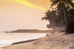 Beautiful sunset on a paradise beach. West Africa Stock Photos