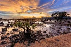 Beautiful sunset in Phuket Stock Photography
