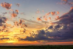 Sunset sky over corn field Stock Image
