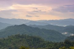 Beautiful sunset in rainforest after rainy. Stock Photography