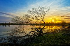 Beautiful sunset reflecting in a lake. In Siedlce, Poland stock images