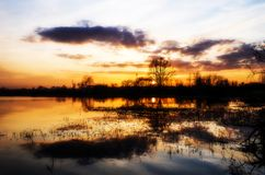 Beautiful sunset reflecting in a lake. In Siedlce, Poland royalty free stock photos