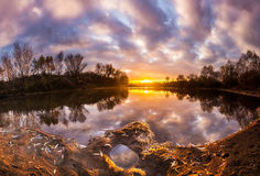 Beautiful sunset reflection. Over wild river Stock Image