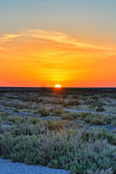 Beautiful sunset on salt lake Chott el Djerid, Sahara desert, Tu Stock Photos
