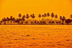 Beautiful sunset scene of backwaters Kerala with silhouette of p Stock Image