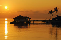 Beautiful sunset scene in tropical resort Stock Photos