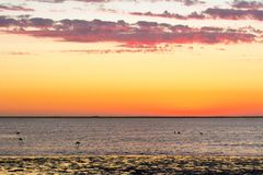 Beautiful Sunset scenery golden cloudy sky and ocean royalty free stock image