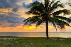Beautiful sunset at the sea. Sunset under tropical palm tree in Thailand Stock Photo