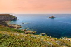 Seascape Cap Fréhel. Beautiful sunset seascape view of the cliffs and blue ocean at Cap Fréhel in Brittany, France, with vibrant heather flowers Royalty Free Stock Photography