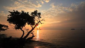 Beautiful sunset on the shore of a tropical island. Koh Chang stock video