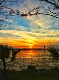 Beautiful sunset and sky. Beautiful sunset sky nature clouds palm trees blue landscape stock photography