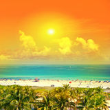 Beautiful sunset. Sky, blue water, palm trees Miami Beach, Ocean Stock Photo