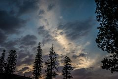 Beautiful sunset sky with Jeffrey Pine trees and interesting cloud formations in Mammoth Lakes California.  stock photo