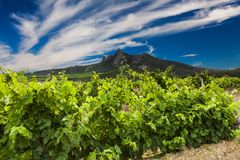 Beautiful sunset sky over a vineyard in the mountains Stock Image