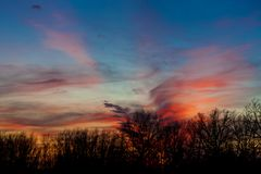 Beautiful sunset sky painted in tones of red and orange with line of trees in silhouette.  Royalty Free Stock Photography