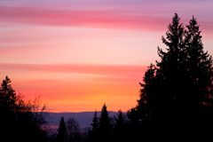 Beautiful sunset sky and tree silhouettes Stock Photos