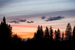 Beautiful sunset sky and tree silhouettes Royalty Free Stock Photos