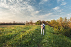 Beautiful sunset. Spring landscape with man on the field Stock Image