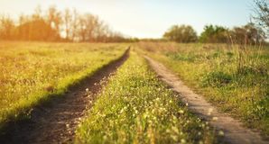 Beautiful sunset. Spring landscape with road in field Royalty Free Stock Photo