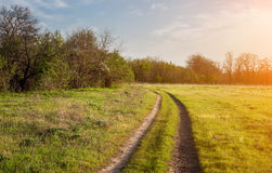 Beautiful sunset. Spring landscape with road in field Stock Photos