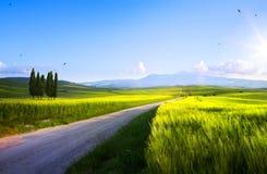 Art beautiful sunset in spring Tuscany farmland; Italy landscape royalty free stock photography