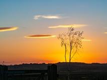 Beautiful sunset at St Aidan`s Nature Park, Yorkshire stock image