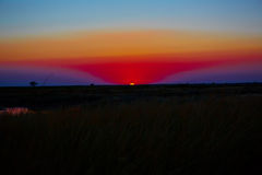 Beautiful sunset in steppe Royalty Free Stock Images