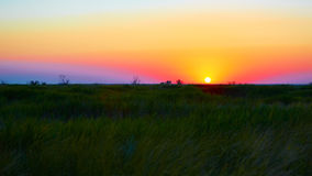 Beautiful sunset in steppe Stock Photo