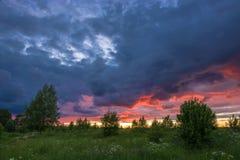 Beautiful sunset on a summer evening. Stock Photo