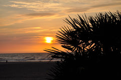 Beautiful Sunset. The sun is almost touching the sea. Time to say goodbye. Trees waving the sun goodbye. See you tomorrow beautiful sun stock photography