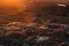 Beautiful sunset sunbeam over mossy rocks and meadow. Royalty Free Stock Images