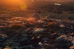 Beautiful sunset sunbeam over mossy rocks and meadow. Stock Photography