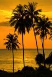 Beautiful sunset, Thailand. Stock Photo