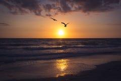 Beautiful sunset in Treasure Island St. Petersburg Florida.  royalty free stock photos