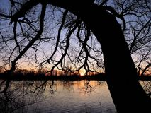Beautiful sunset, trees  and river, Lithuania Stock Image