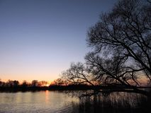 Beautiful sunset, trees  and river, Lithuania Stock Photography