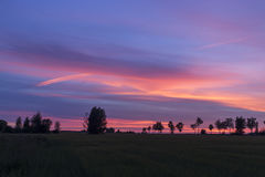 Beautiful sunset. Trees on a sunset in summer background Royalty Free Stock Photography
