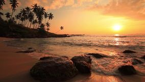 Beautiful sunset on a tropical beach. Sri Lanka stock footage