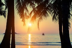 Beautiful sunset on a tropical beach through palm leaves. Nature. Royalty Free Stock Photos