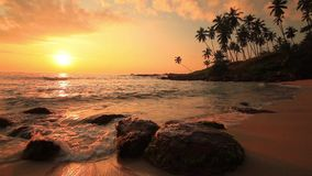 Beautiful sunset on a tropical beach. Sri Lanka stock video