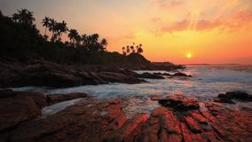 Beautiful sunset on a tropical beach. Sri Lanka stock video footage