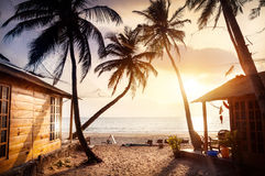 Beautiful Sunset at tropical beach. Wooden cottage with sea view in tropical resort with curved coconut palm trees and sunbed on the beach at beautiful sunset Stock Image