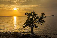 Beautiful sunset on a tropical island. Koh Chang. Royalty Free Stock Photo
