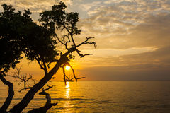 Beautiful sunset on a tropical island. Koh Chang. Stock Photo